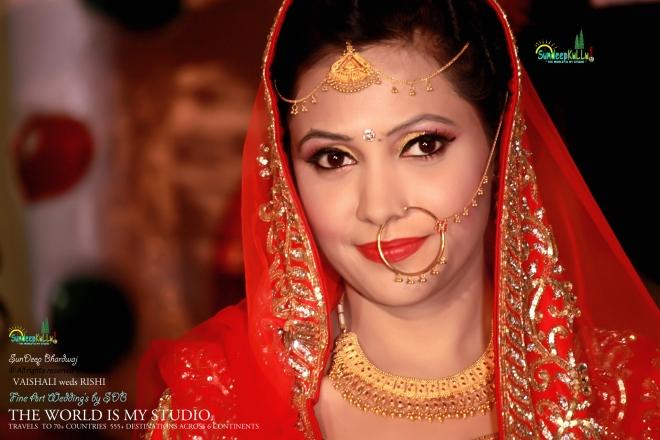 VAISHALI weds RISHI 14 Dr PK JAMWAL's Daughter 9294 AWJ