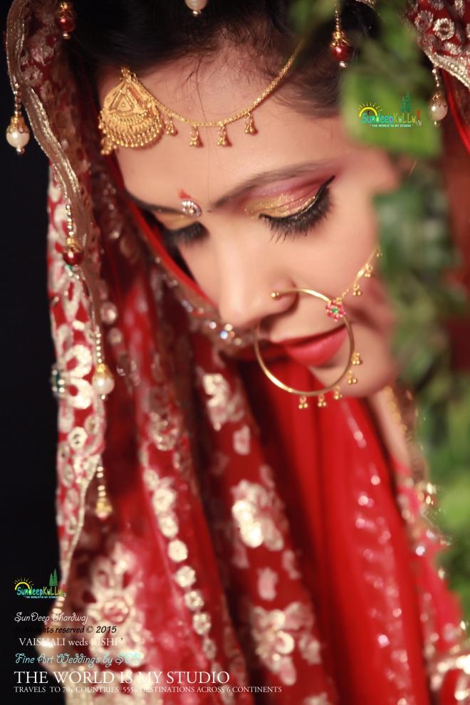 VAISHALI weds RISHI 14 Dr PK JAMWAL's Daughter 9336 AWJ