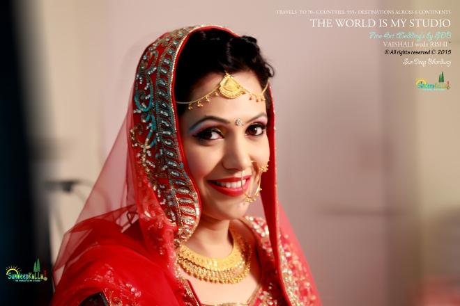VAISHALI weds RISHI 16 Dr PK JAMWAL's Daughter 9251 AWJ