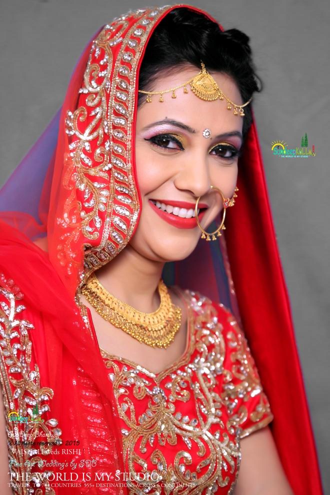 VAISHALI weds RISHI 17 Dr PK JAMWAL's Daughter 9222 AWJ