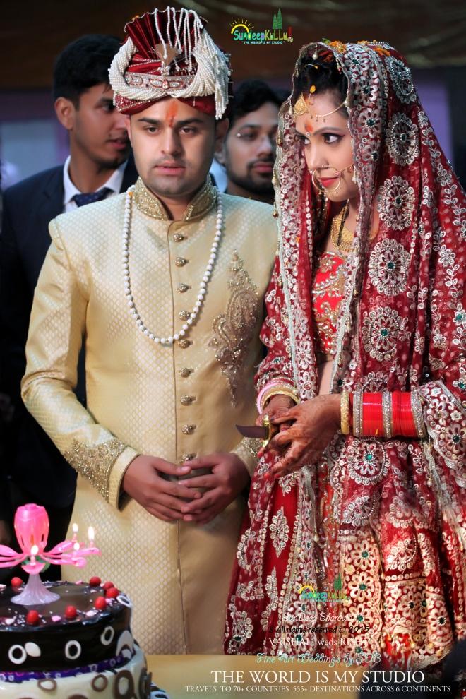 VAISHALI weds RISHI 18 Dr PK JAMWAL's Daughter 9470 AWJ