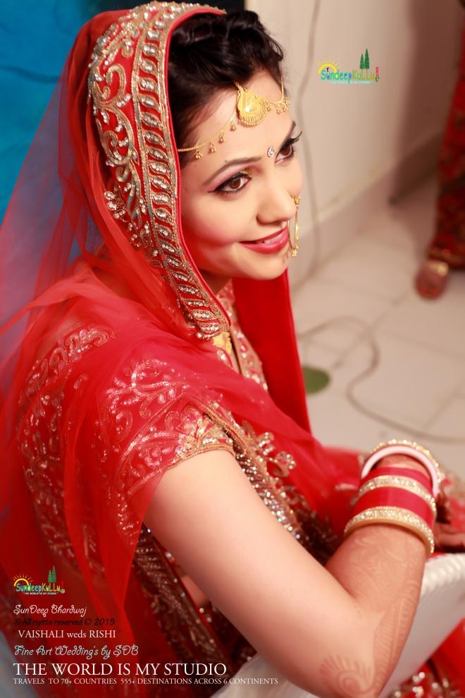 VAISHALI weds RISHI 19 Dr PK JAMWAL's Daughter 9268 AWJ