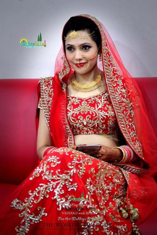 VAISHALI weds RISHI 2