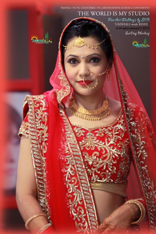 VAISHALI weds RISHI 20 Dr PK JAMWAL's Daughter 9182 AWJ