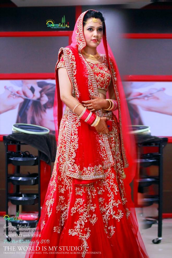 VAISHALI weds RISHI 21 Dr PK JAMWAL's Daughter 9185 AWJ