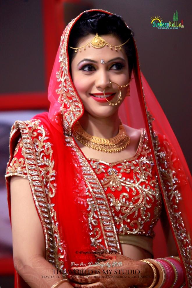 VAISHALI weds RISHI 3 Dr PK JAMWAL's Daughter 9183 AWJ