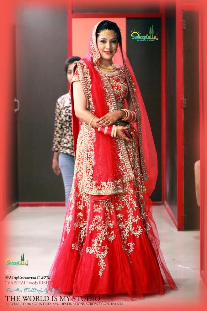 VAISHALI weds RISHI 31 Dr PK JAMWAL's Daughter 9189 AWJ