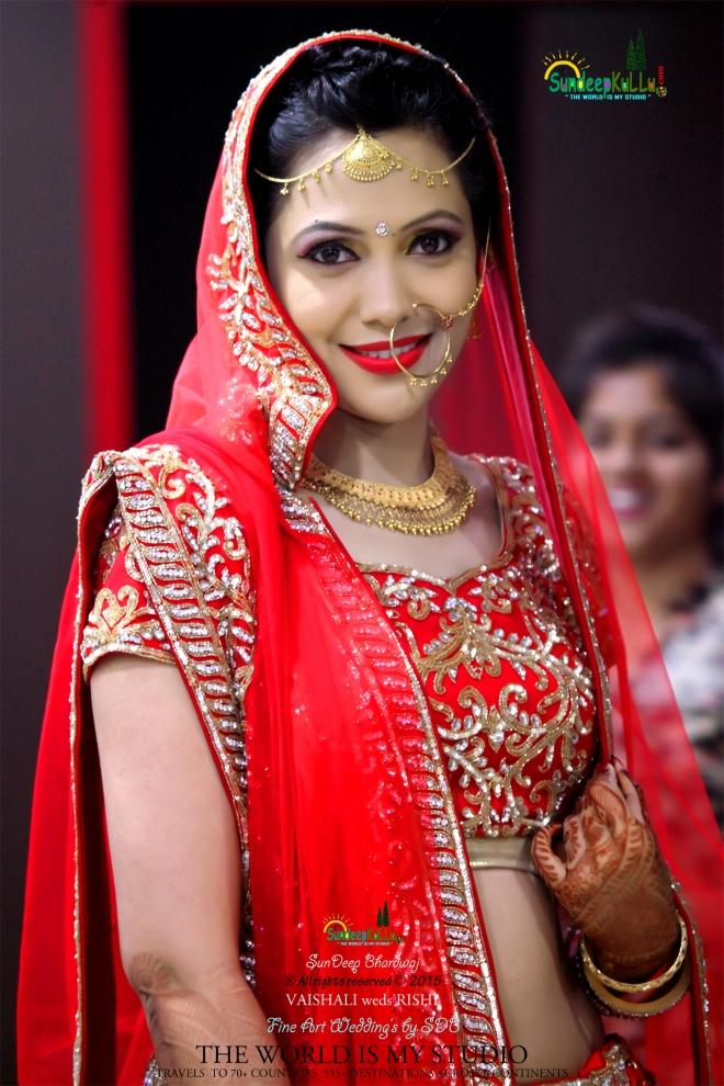 VAISHALI weds RISHI 5 Dr PK JAMWAL's Daughter 9157 AWJ