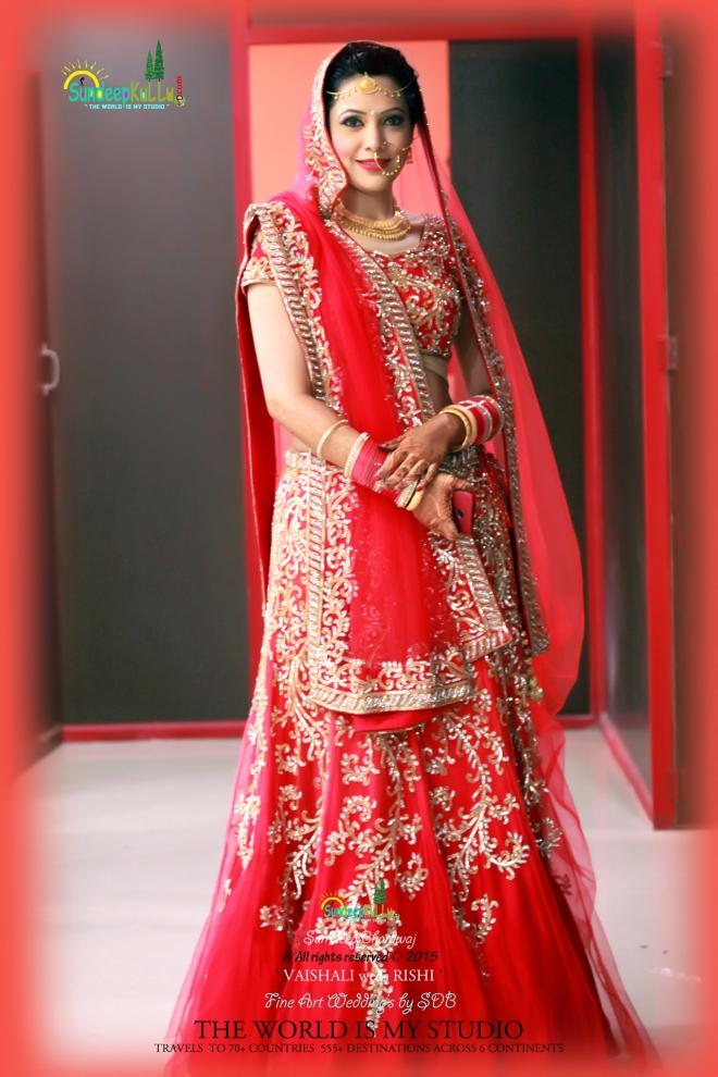 VAISHALI weds RISHI 6 Dr PK JAMWAL's Daughter 9186